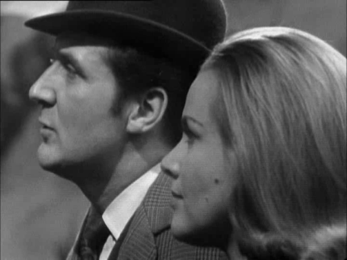 steed-cathy-mandrake