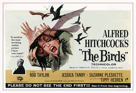 the-birds-poster